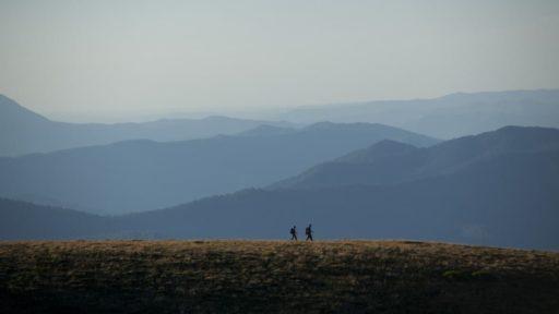 Mount Beauty, Activities